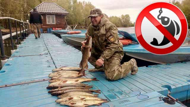 Запрет ловли рыбы в московской области 2019